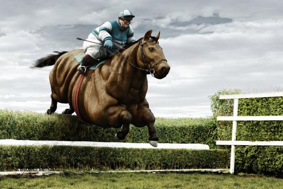 Pferderennen Jockey
